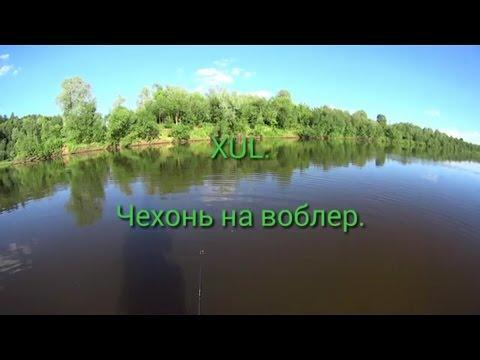 Статьи, форум, видео о рыбалке на Днестре