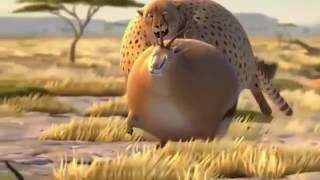 Если бы дикие животные ели фастфуд....