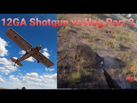 12GA Shotgun vs