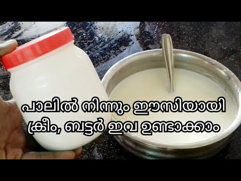 Homemade Butter || Homemade Cream And Butter From Raw Milk Recipe In Malayalam / No. 122