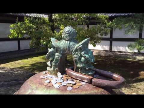 Japanese Court Yard, Nijō Castle, 二条城, Castle, Tokugawa Castle, Kyoto, Japan