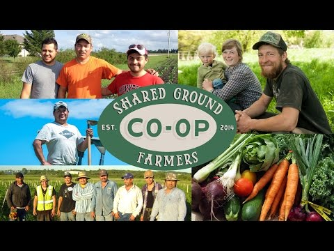 Shared Ground Farmers' Cooperative - Where We Belong