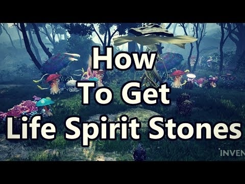 [BDO] How to get Life Spirit Stones