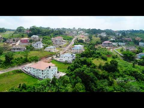 Flying Jamaica | Cedar Gardens | Mandeville | Walinton Mosquera