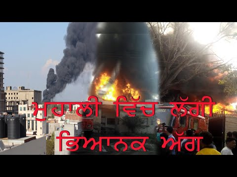 Massive Fire Breaks Out in A Factory in Mohali Industrial Area | News Report