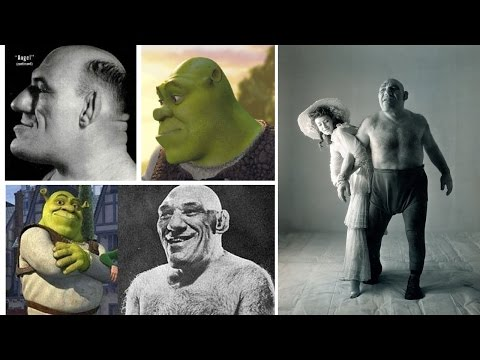 A person like Shrek