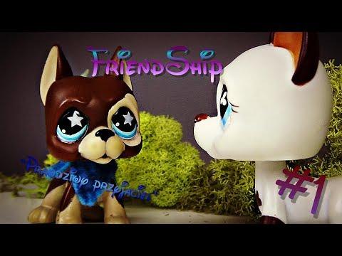 Lps: FriendShip #1 [ FriendZone 2S ] ''Najlepszy przyjaciel''