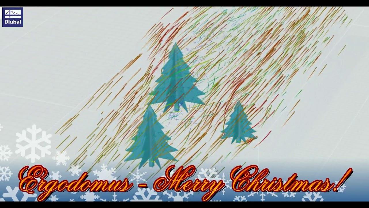 Merry Christmas from Ergodomus!