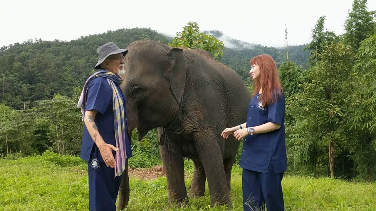 Leslie and Melodie at the Thai Elephant Home