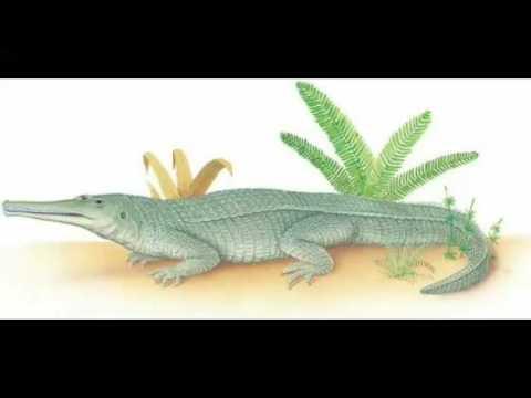 Rutiodonte: mesozoic park (prehistoric world temporada 2)