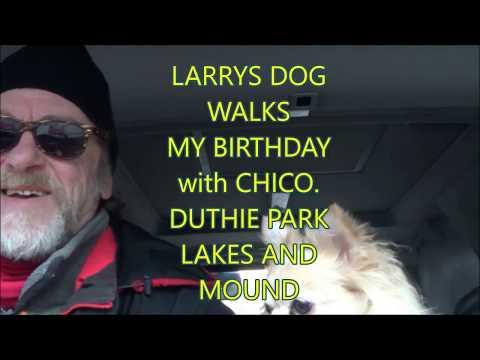 LARRYS DOG WALKS-- Birthday Walk .Duthie Park Lakes and Mound