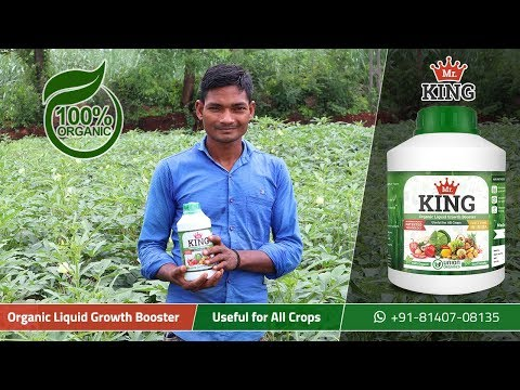 Mr. King – 100% Organic Liquid Growth Booster | Extremely Beneficial for Okra | Union Organics
