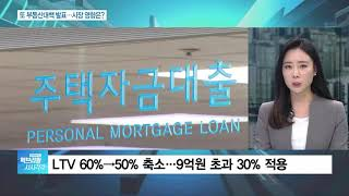 정부 '19번째' 부동산 대책 발표…집값 안정화될까?
