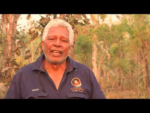 Northern Australia fire management with the Emissions Reduction Fund