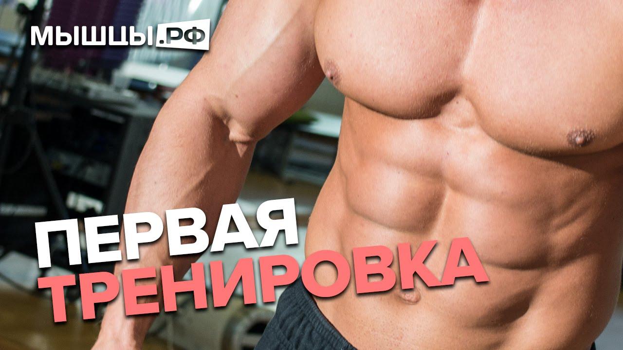 Новичок: путь к большим мышцам! Миронов, Кай Грин, Назаренко