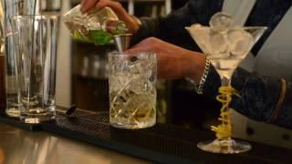 Ibiza Party Martini for Stoli Elit art of Martini by Mauro Lopes