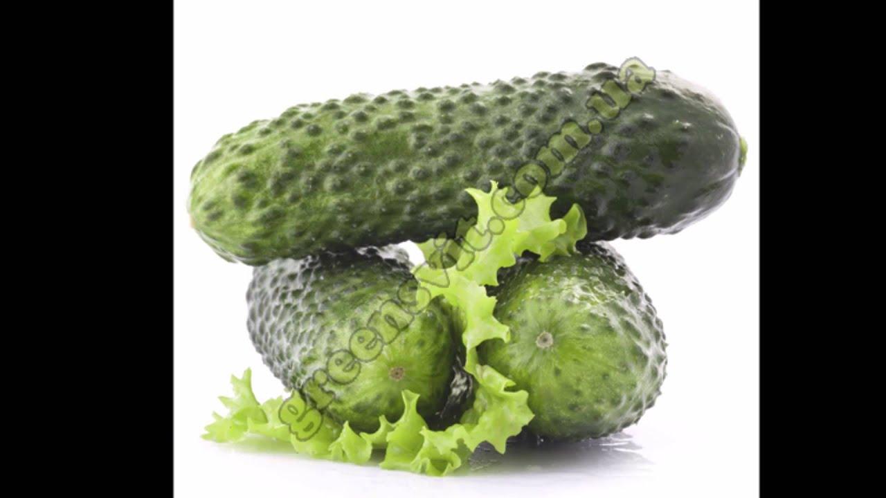 Семена профессионального качества в крупной и средней упаковке для производства овощей в защищенном и открытом грунте. Посмотреть. Семена профессионального качества в небольшой упаковке для фермерских хозяйств и частного подворья. Посмотреть.