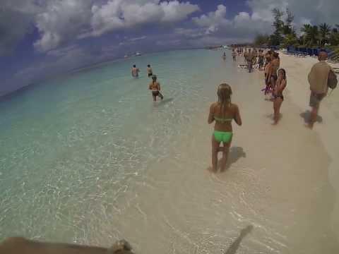Shark at Beaches Resort Turks and Caicos Islands