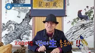 2020년 경자년 뱀띠生 1년 총운세 토정비결 사주팔자 오늘의운세