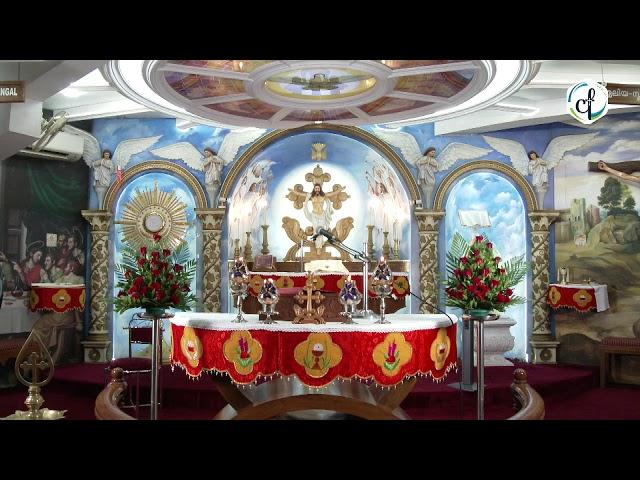 Holy Mass in English    October 18 Sunday    Syro Malabar    Catholic Focus