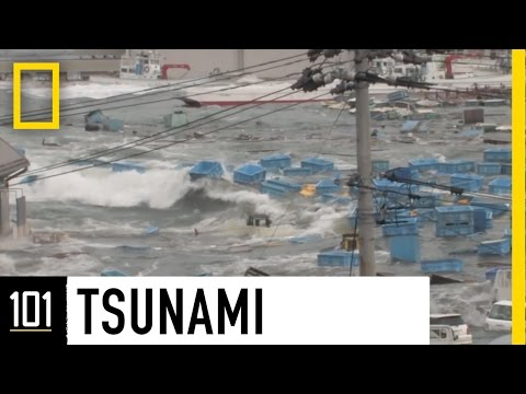 Tsunamis 101 | National Geographic