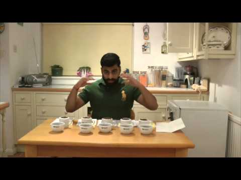 PMD Tea Buyers Club Episode #041 Talawakelle Teas Part 1