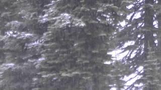 3-23-15 Fifty Shades of Big Mtn Grey