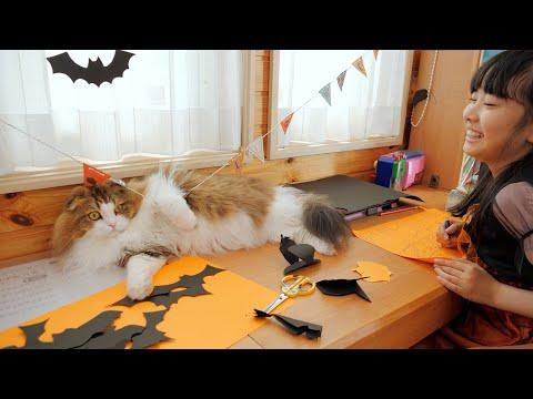 ハロウィンの準備をする娘の手伝い?をしてパーティーに参加する猫