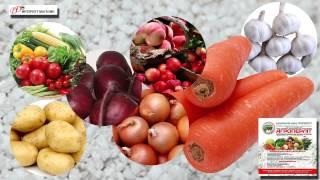 Агроперлит - для долгого хранения и транспортировки овощей и фруктов