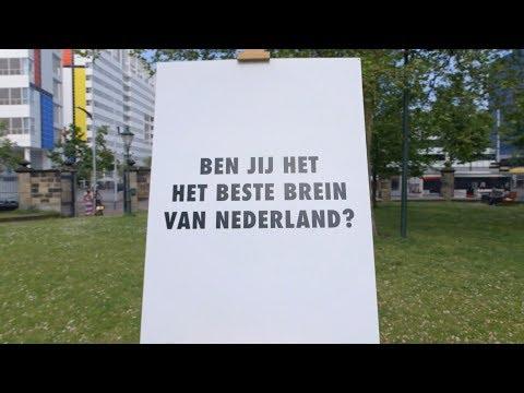 Het Stroop-experiment   Het beste brein van Nederland