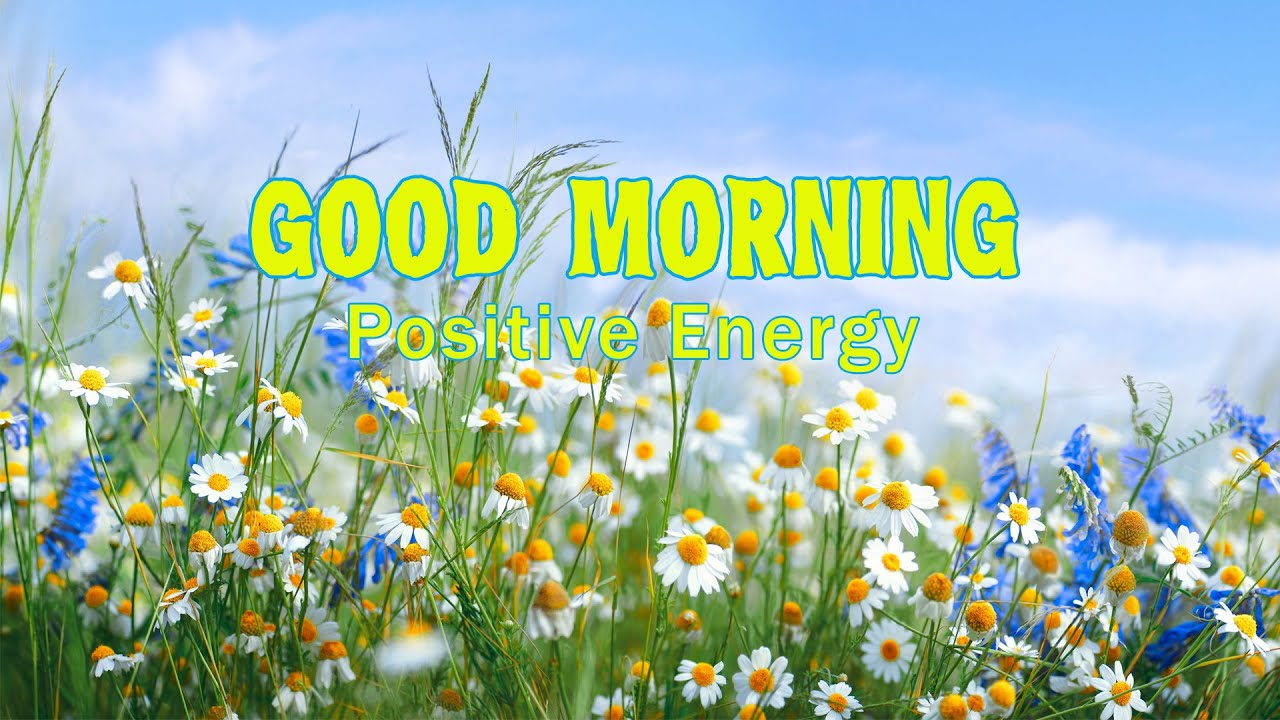 Morning Beautiful Music: Romantic Piano Love Songs & Peaceful Birds Singing for Positive Energy