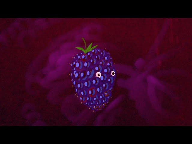 Peter Broderick - Ode To Blackberry (Official Music Video)