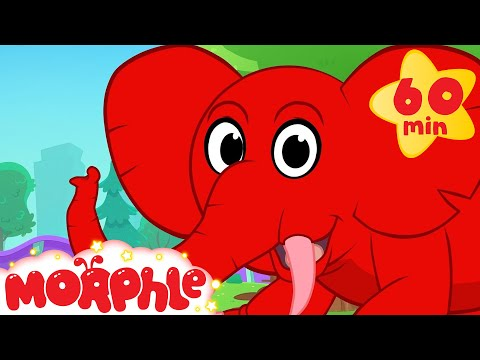Thumbnail: Morphle's Elephant Adventures! (+1 hour funny Morphle kids animal videos compilation)