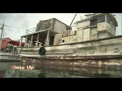 CLOSE UP - GREENPEACE ADVOCACY 01/12/2013