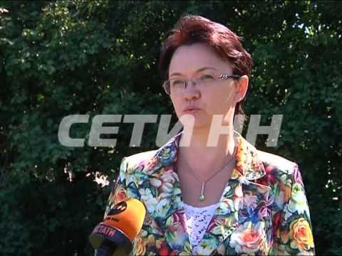 Редкие черные аисты появились в Нижегородской области
