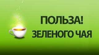 Польза зеленого чая. Чем полезен зеленый чай!