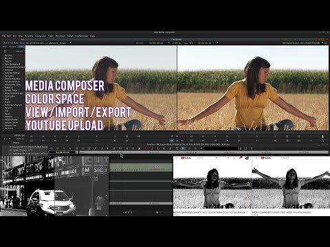 MEDIA COMPOSER | COLOR SPACE VIEW/IMPORT/EXPORT AND HOW IT IMPACTS YOUTUBE
