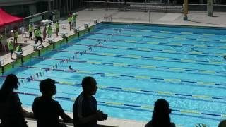 大力游泳會2016年週年水運會 - 男子50米蛙泳 (Ans