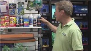 Pet Fish : How To Start A Freshwater Aquarium The Right Way