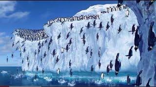Humans Antarctica