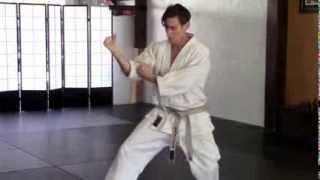 Karate Heian Yon Dan Block 02 Morote Uke