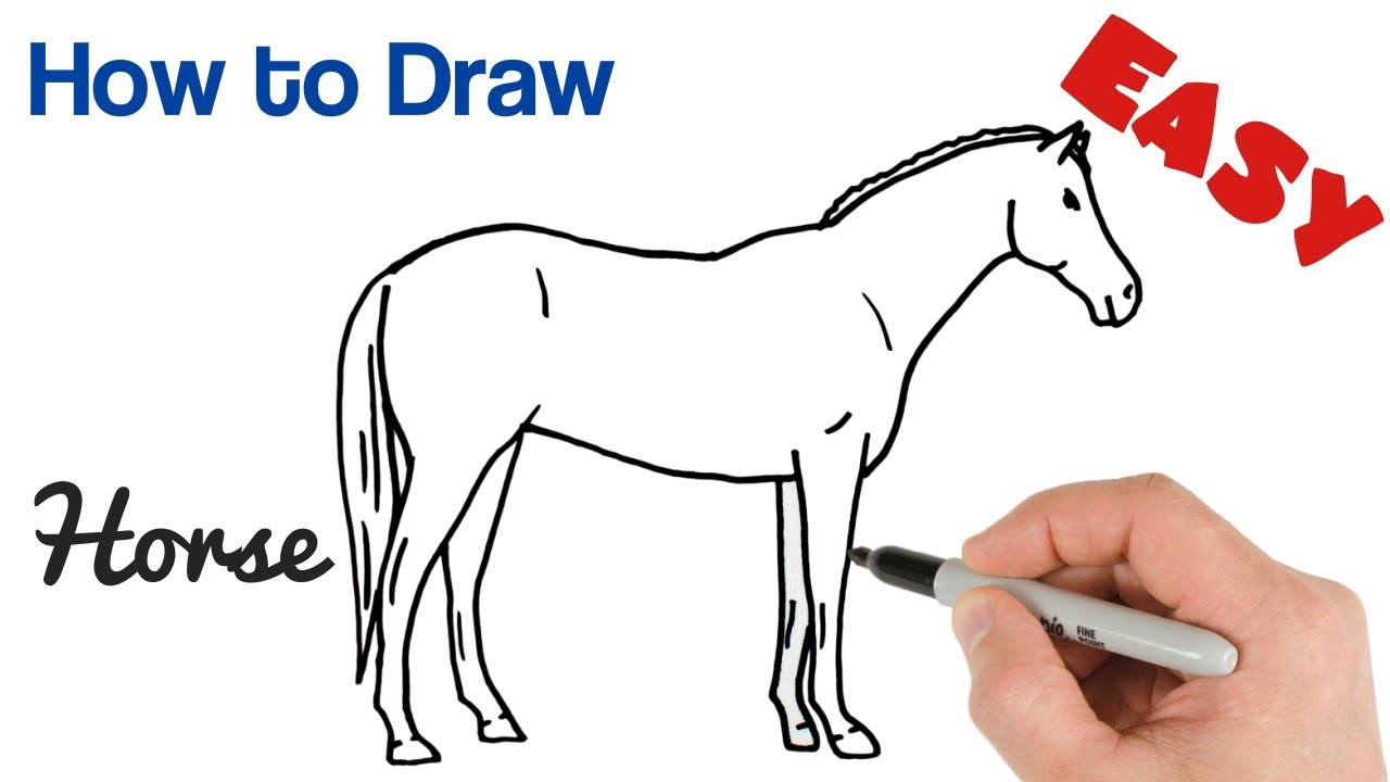 How To Draw A Horse Easy Step By Step Drawing Youtube