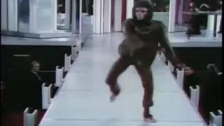 Ape Dance