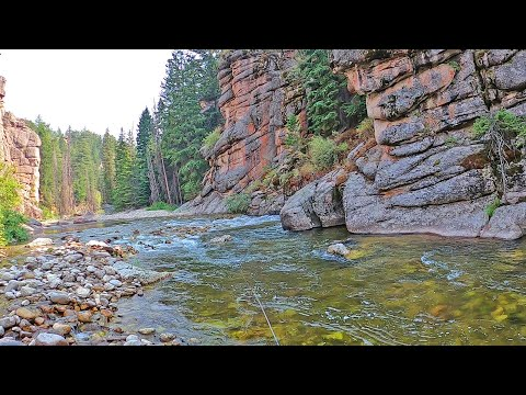 Fly Fishing Wyoming - Audible To Plan B And Find A Grand Slam (pt5)