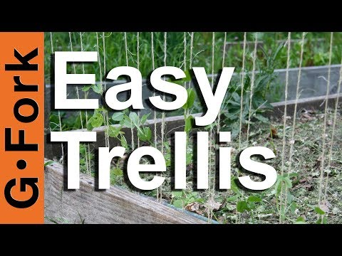 How to make a trellis - GardenFork.TV