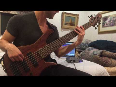 Thunder Cat - Friend Zone (Full Bass Cover)