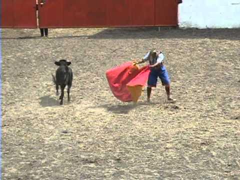 Midget rivera pico 2008 rodeo