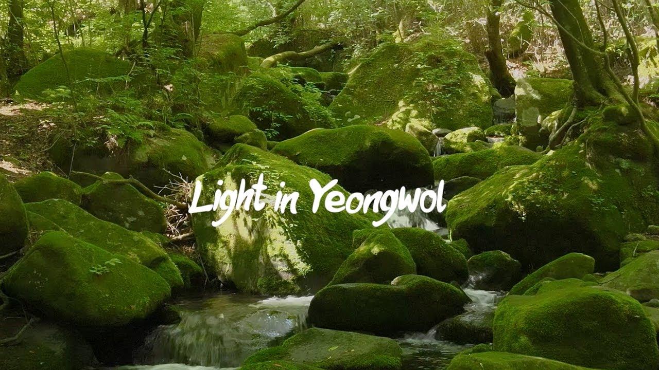 [야놀자x강원관광 콘텐츠 크리에이터] 영화처럼 담아낸 영월의 레저 성지
