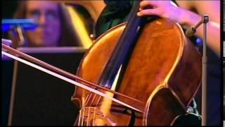 Dvořák: Cello Concerto in B minor, Op. 104, B. 191, Latica Anić