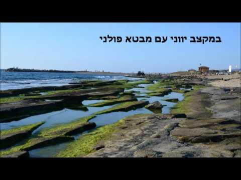 שיר ישראלי.wmv